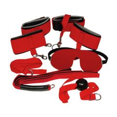 Bad Kitty Basic Bondage Kit (Flogger, Cuffs, Gag, Blindfold)